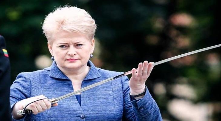 Президент Литвы готовит Литву к нападению России