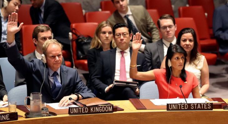 Великобритания и США в Совбезе ООН голосуют против