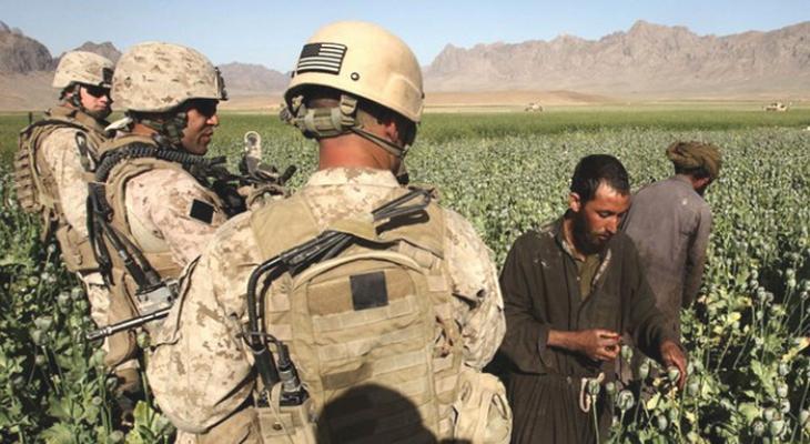 Сбор афганцами опиумного мака под контролем США